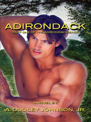 cover image of Adirondack